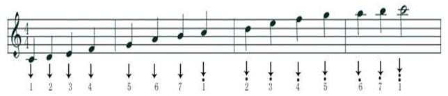 高音谱号和低音谱号各自有五条线,五线谱也因此得名.